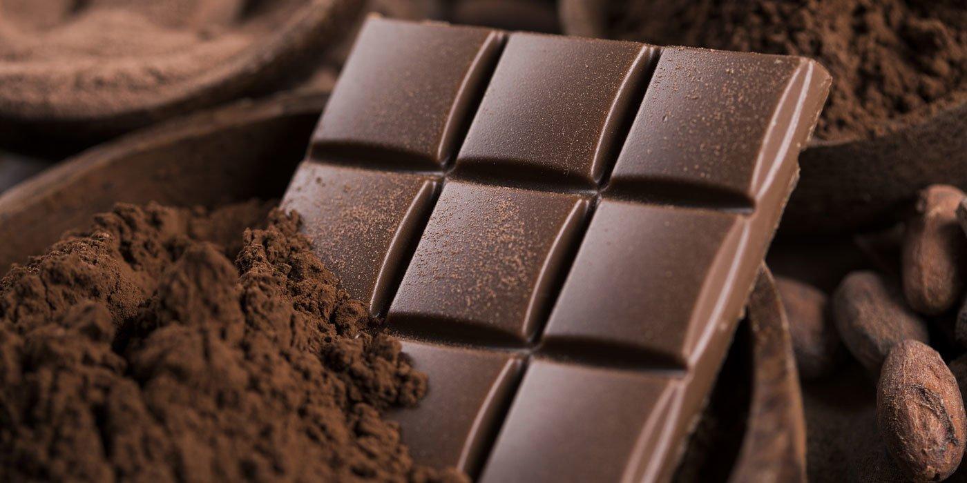 Mehrere Schüsseln mit Kakaopulver, -bohnen und einer fertigen Tafel