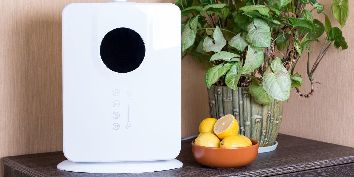 Weißer Luftbefeuchter neben einer Topflanze und einer Schale Zitronen auf einer Kommode