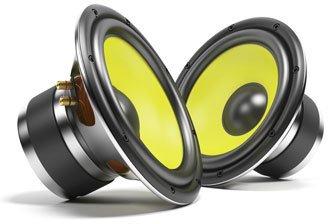 Zwei herausgenommene Lautsprecher-Membranen nebeneinander.