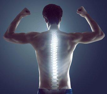 Mann mit Rücken zur Kamera und angespannten Muskeln, dessen Wirbelsäule grafisch hervorgehoben ist