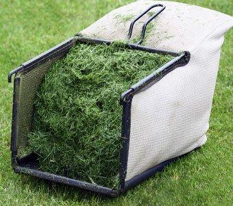 Nahaufnahme eines gefüllten Fangkorbes eines Rasenmähers.