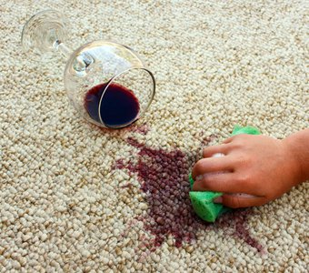 Es wird mit Hilfe eines Schwammes versucht, einen Rotwein-Fleck aus einem Teppich zu entfernen