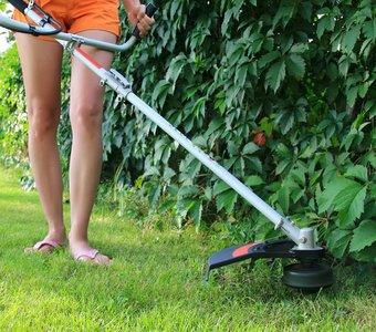 Frau trimmt Rasen unter Hecke mit Motorsense