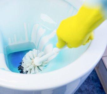 Uringeruch Toilette