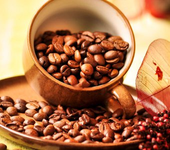 Eine Kaffeetasse mit Kaffeebohnen gefüllt