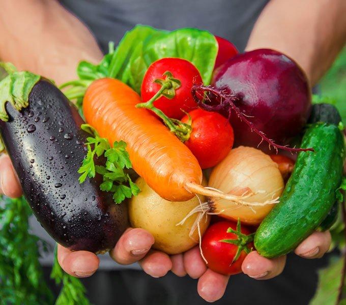 Hände, die verschiedenes Gemüse halten
