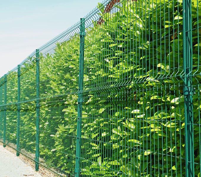 Grüner, hoher Einstabmattenzaun
