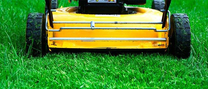 Nahaufnahme der Rückseite eines Rasenmähers auf dem Rasen.
