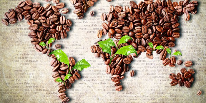Aus Kaffeebohnen gelegte Weltkarte, auf der junge Kaffeepflänzchen die Anbaugebiete markieren