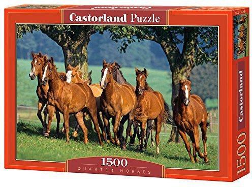 Kosmos Wilde Pferde 1000 Teile