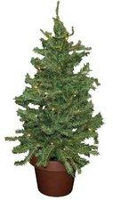 Künstlicher Tannenbaum Im Topf.Weihnachtsbaum Im Topf Ab 7 77 Jetzt Bei Preis De Kaufen