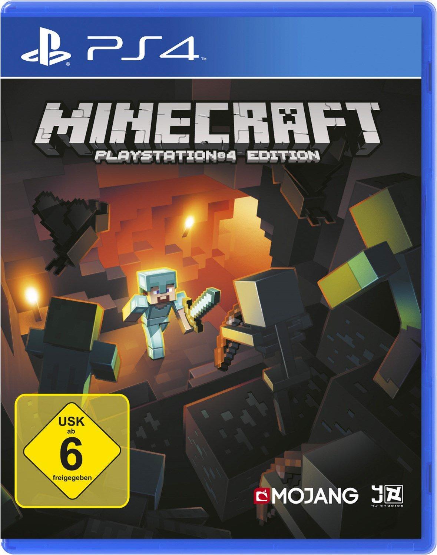 Minecraft (PS12)