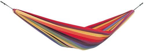 Amazonas Chico rainbow