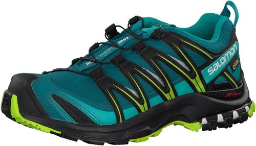Salomon XA Pro 3D GTX W veridian green/tonic green/teal blue