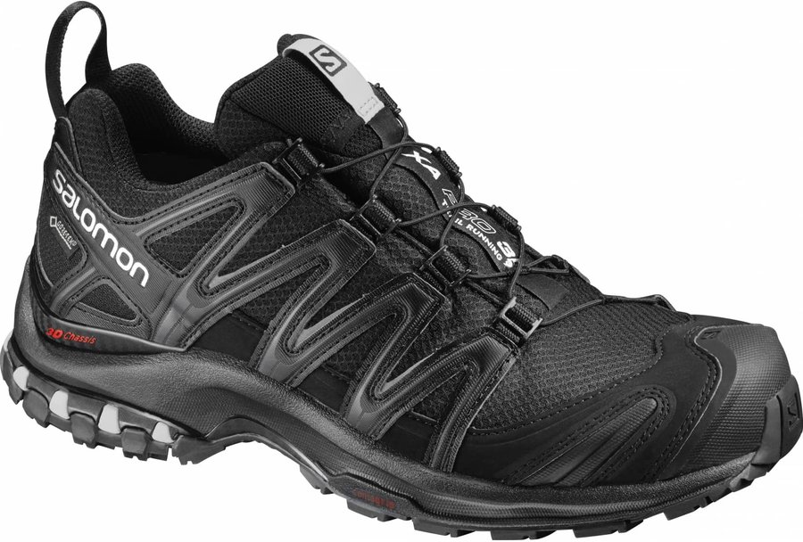 Salomon XA PRO 3D GTX W blackblackmineral grey