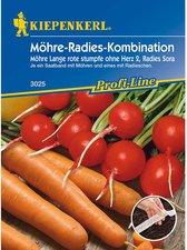 Möhren /'Pariser Markt 5/' Daucus carota Saatband Karotten Mohrrüben Samen 43002