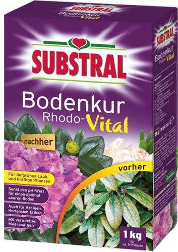 Substral Rhodo-Vital