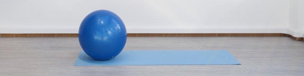 Blue Gymnic Body Ball 95 Gymnicball